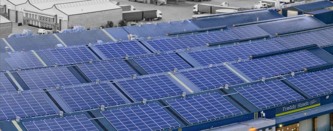 Bright idea keeps Freddy Hirsch Group a step ahead of energy crises
